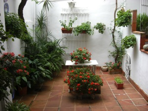 The patio of Pepe's mother's house